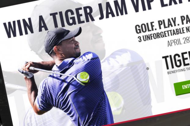 Tiger Woods Tiger jam
